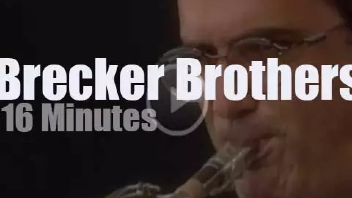The Brecker Brothers play at Newport Jazz Festival (1993)