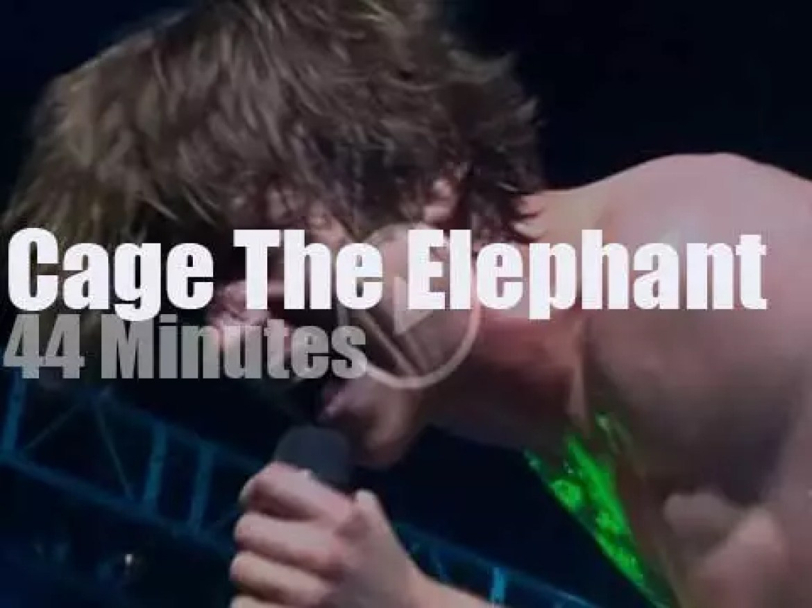 Cage The Elephant rock Chicago (2014)