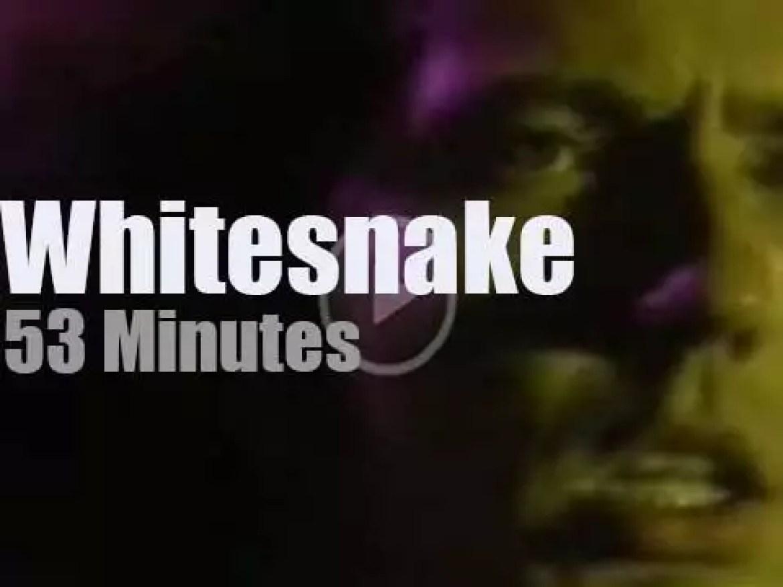 Whitesnake are 'Monsters of Rock' (1983)