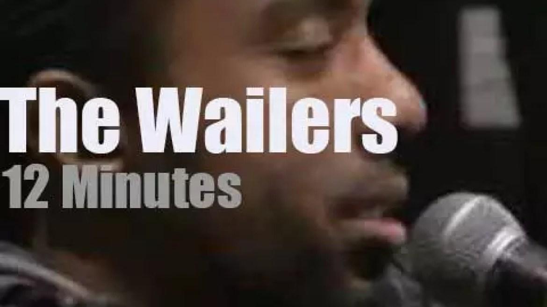 On radio today, The Wailers at Radio Woodstock (2013)