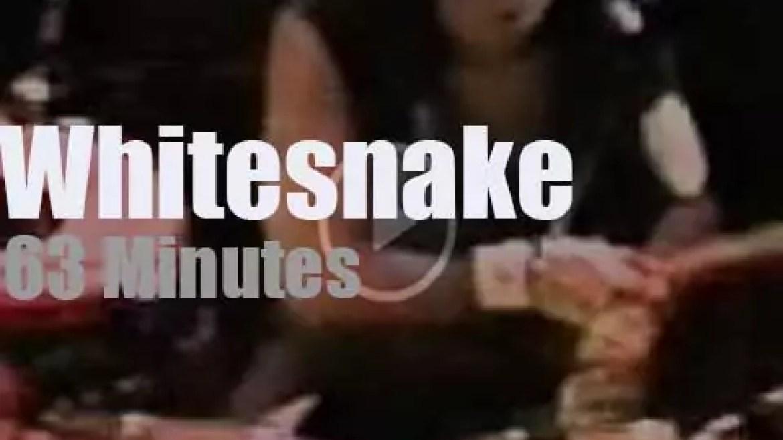 Whitesnake open 'Rock In Rio' (1985)