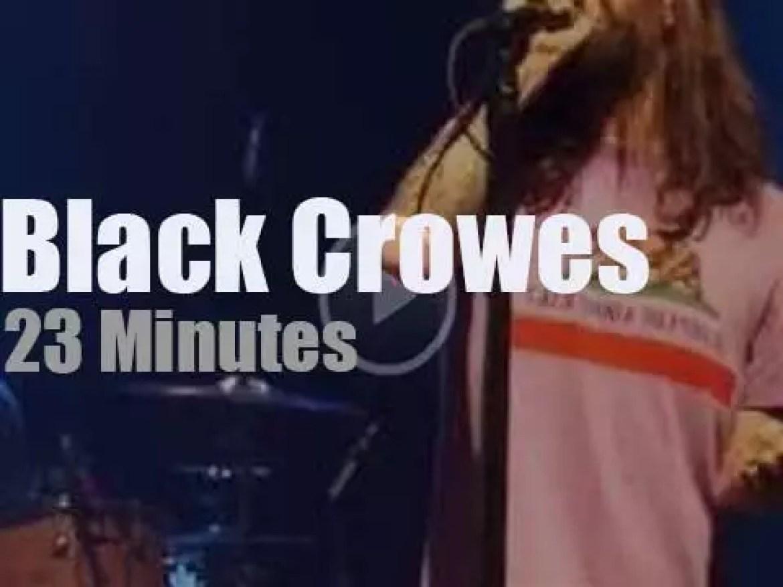 The Black Crowes visit Chicago (2013)