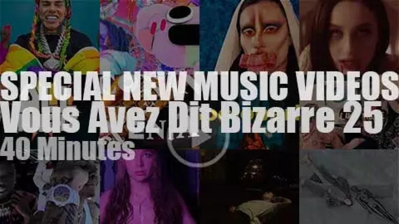 'Vous Avez Dit Bizarre' Special New Music Videos 25