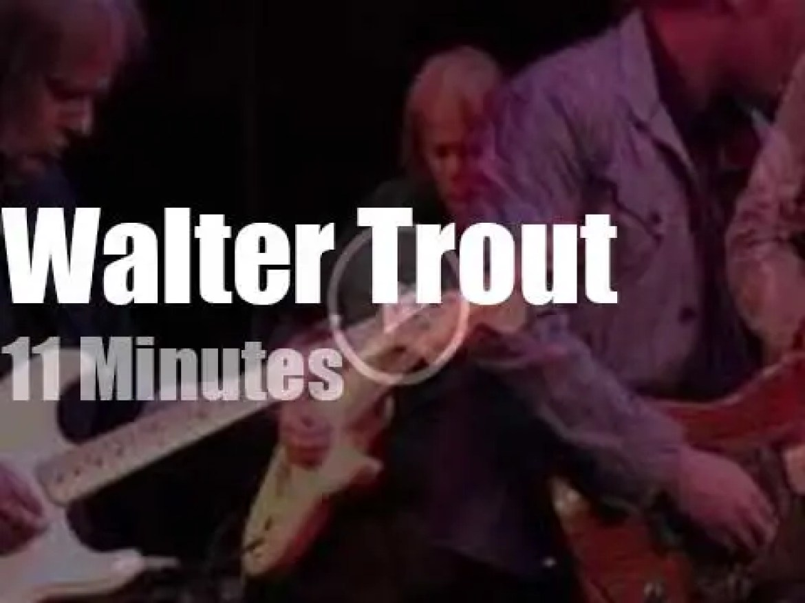 Walter Trout and son bluesify CAlifornia (2016)