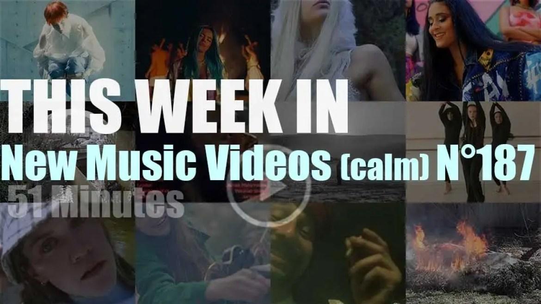 This week In New Music Videos (calm) N°187