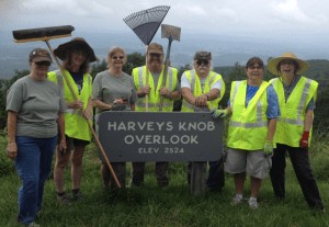 Harveys Knob 2014