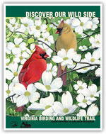 Virginia Birding and Wildlife Trail