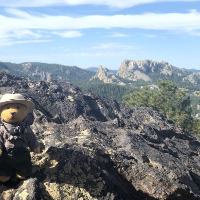 Episode 62 — The Black Hills: Custer State Park and the Buffalo Roundup