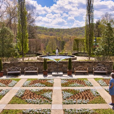 Episode 194 | The Blue Ridge Parkway, the North Carolina Arboretum, and a New Charcoal Grill