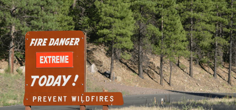 Arizona's Coconino and Kaibab Forests Close Due to Wildfire Concerns