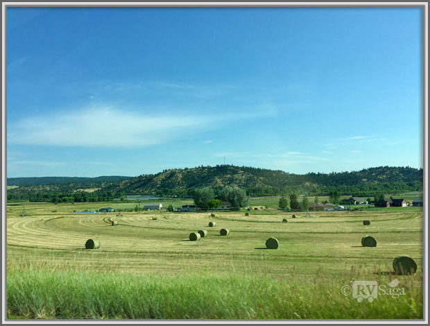 Hay by Yellowstone River