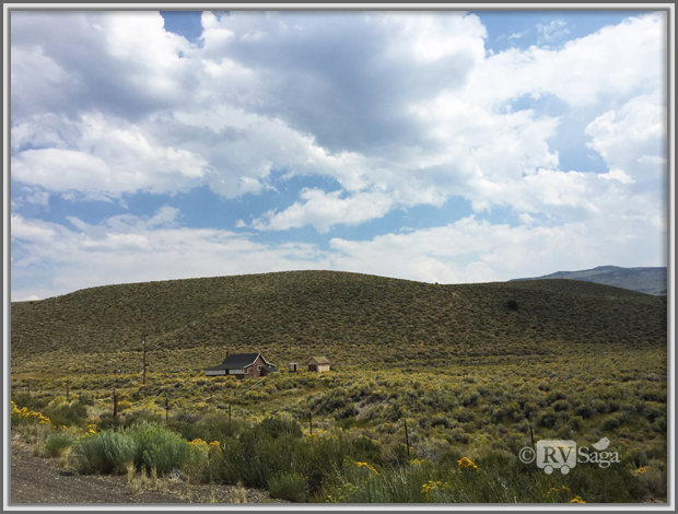 Sagebrush Covered Landscape