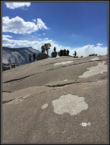 Glacial Polish on Olmsted Point. Yosemite National Park, California