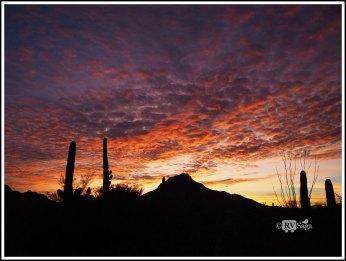 Sunrise at Tucson