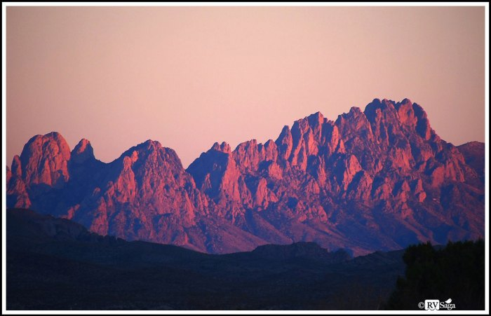 Organ Mountains in Sunset