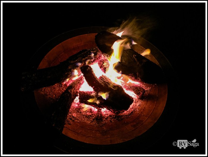 Salt Cedar Campfire