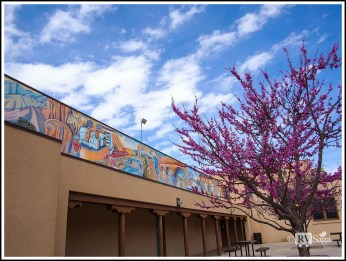 Redbuds and Mural