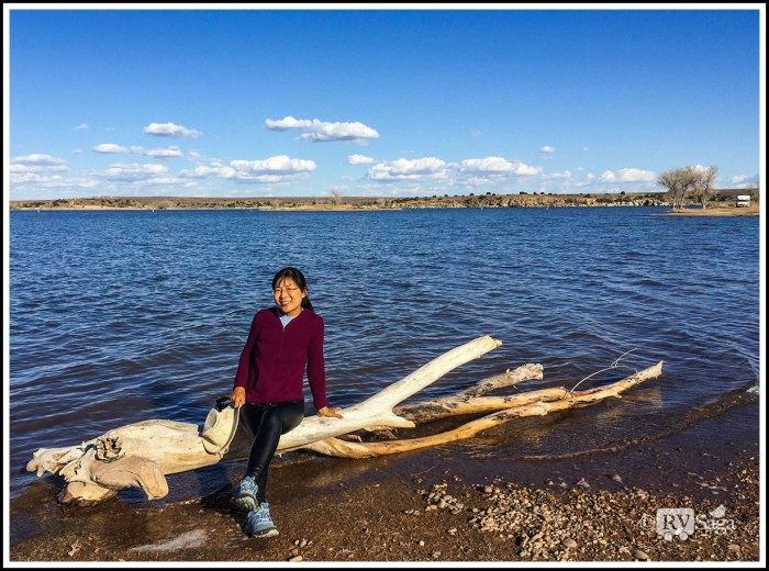 Weiwei-by-Sumner-Lake