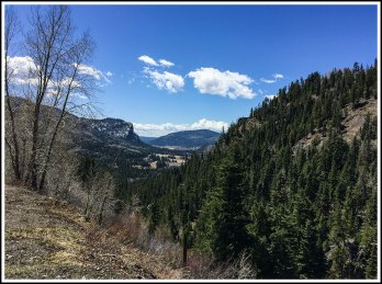 The Valley Below Wolf Creek Pass