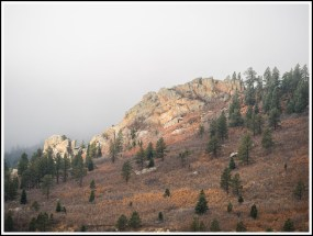 Stonewall in the Mist