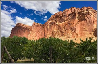 Orchards Under the Sandstone Cliffs at Capital-Reef National Park. Utah