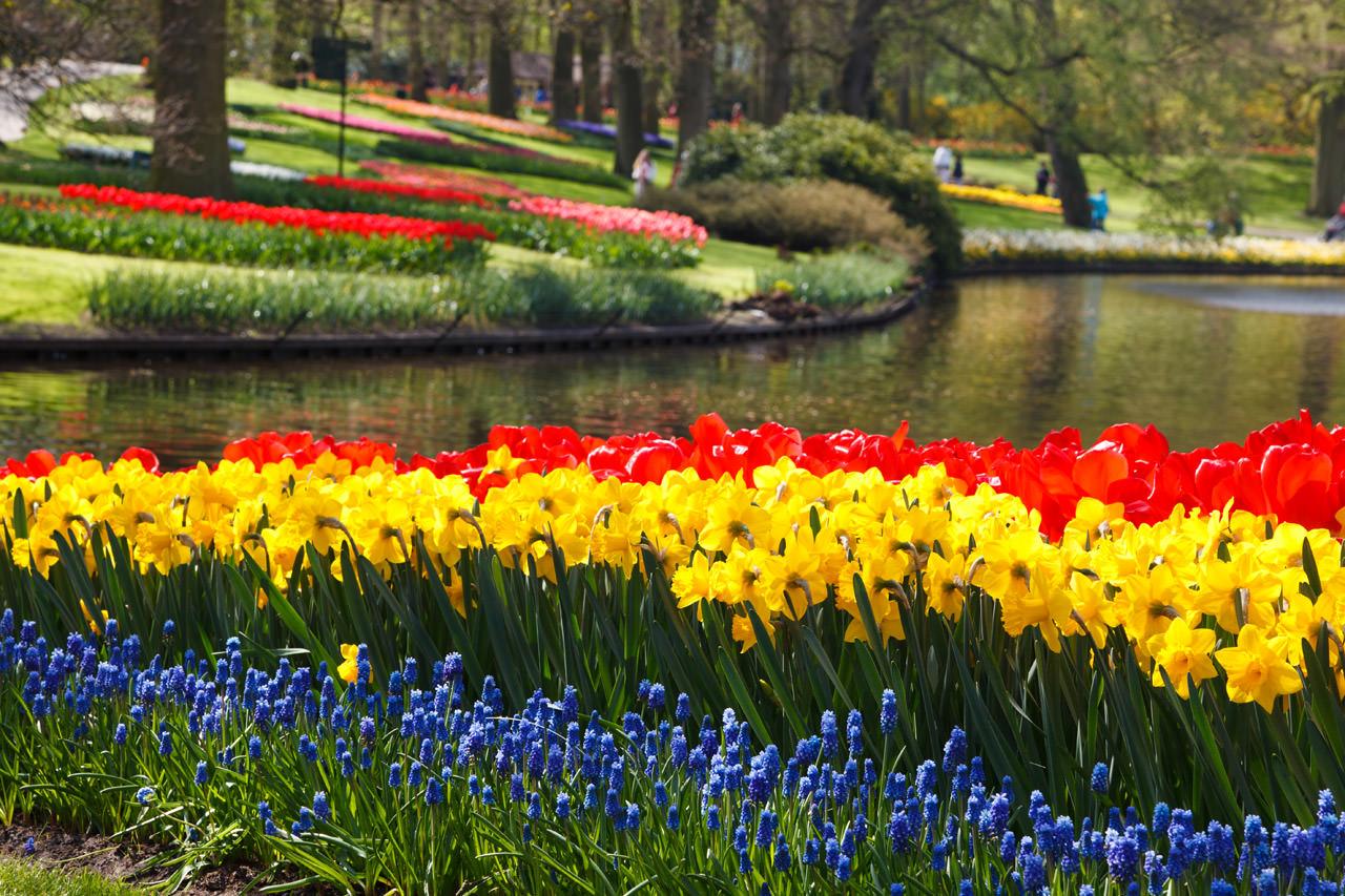 أجمل حدائق الأزهار الملونة في العالم