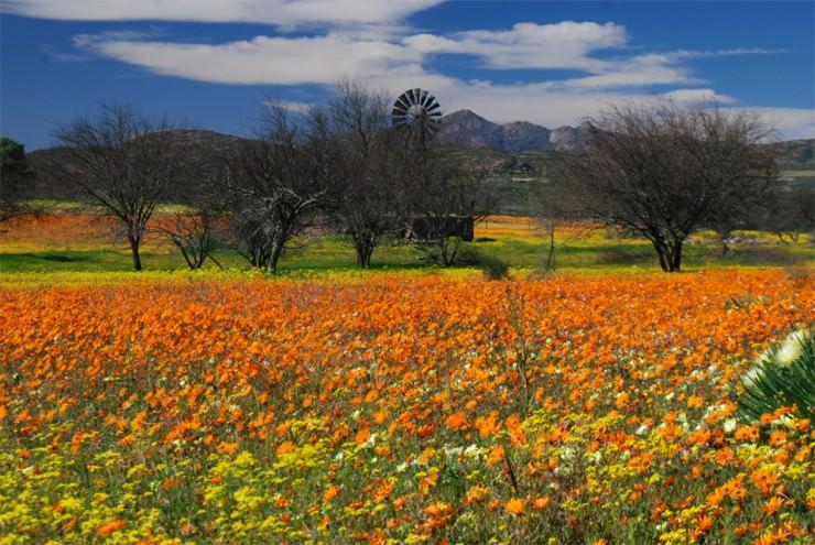 ناماكوالند، ناميبيا وجنوب أفريقيا