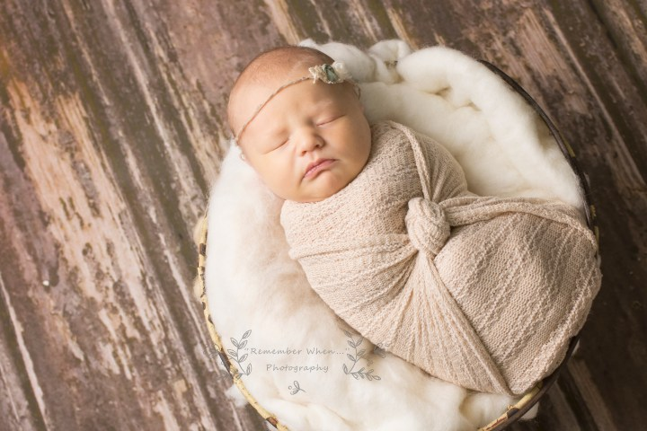 newborn pictures lima ohio