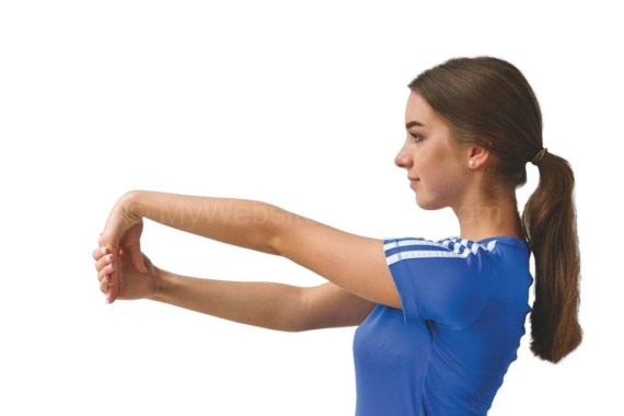 Elbow Joints Upper Part Pain