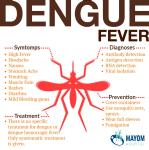 Dengue Fever Causes, Symptoms, Treatment