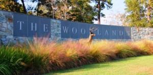 the-woodlands-entrance