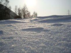 snow-loneliness