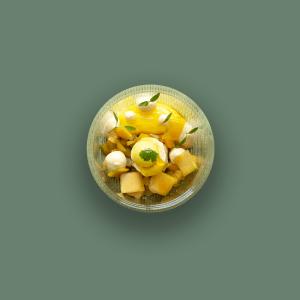 Mango Mania Ryan Foodshop ryan Bahadoer
