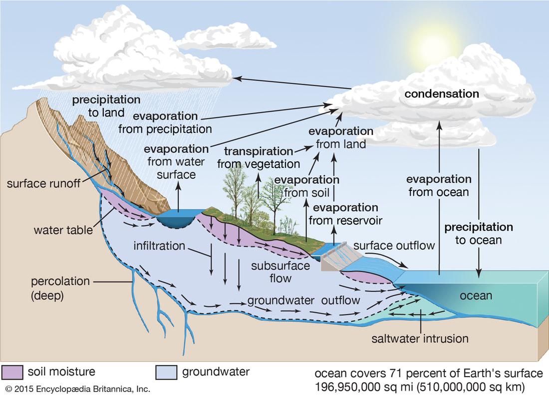 Earth Env Science