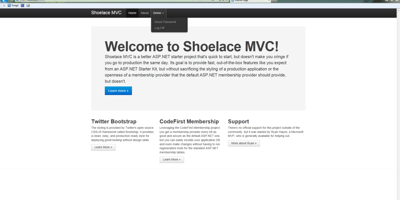 ShoelaceMVC, My Newest Open Source Project – ASP.NET MVC 3 Starter Project for Building Fast AND Production Quality Webapps.