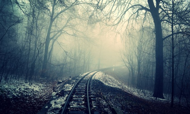 Ghost VS WordPress (and Why I Migrated Back to WordPress)