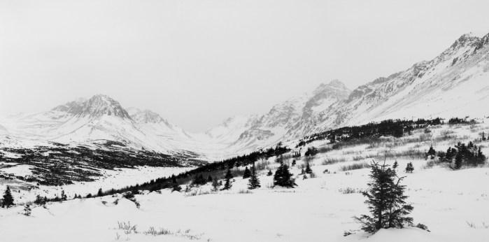 Flattop Mountain, Anchorage, Alaska - Olympus C5050Z - Digital - January 2004