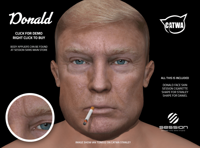 Session Skins Donald Trump 27 Oct 2018.png