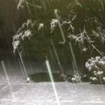 March 2013 Snowfall in Ashburn