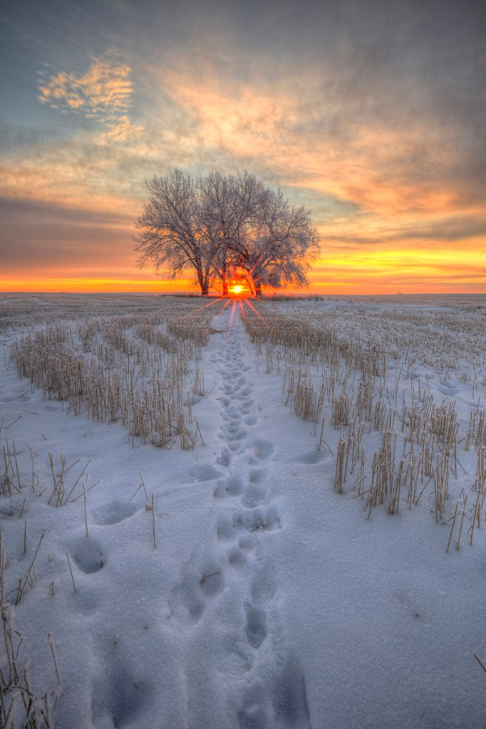 Walk towards the light Ryan Wunsch
