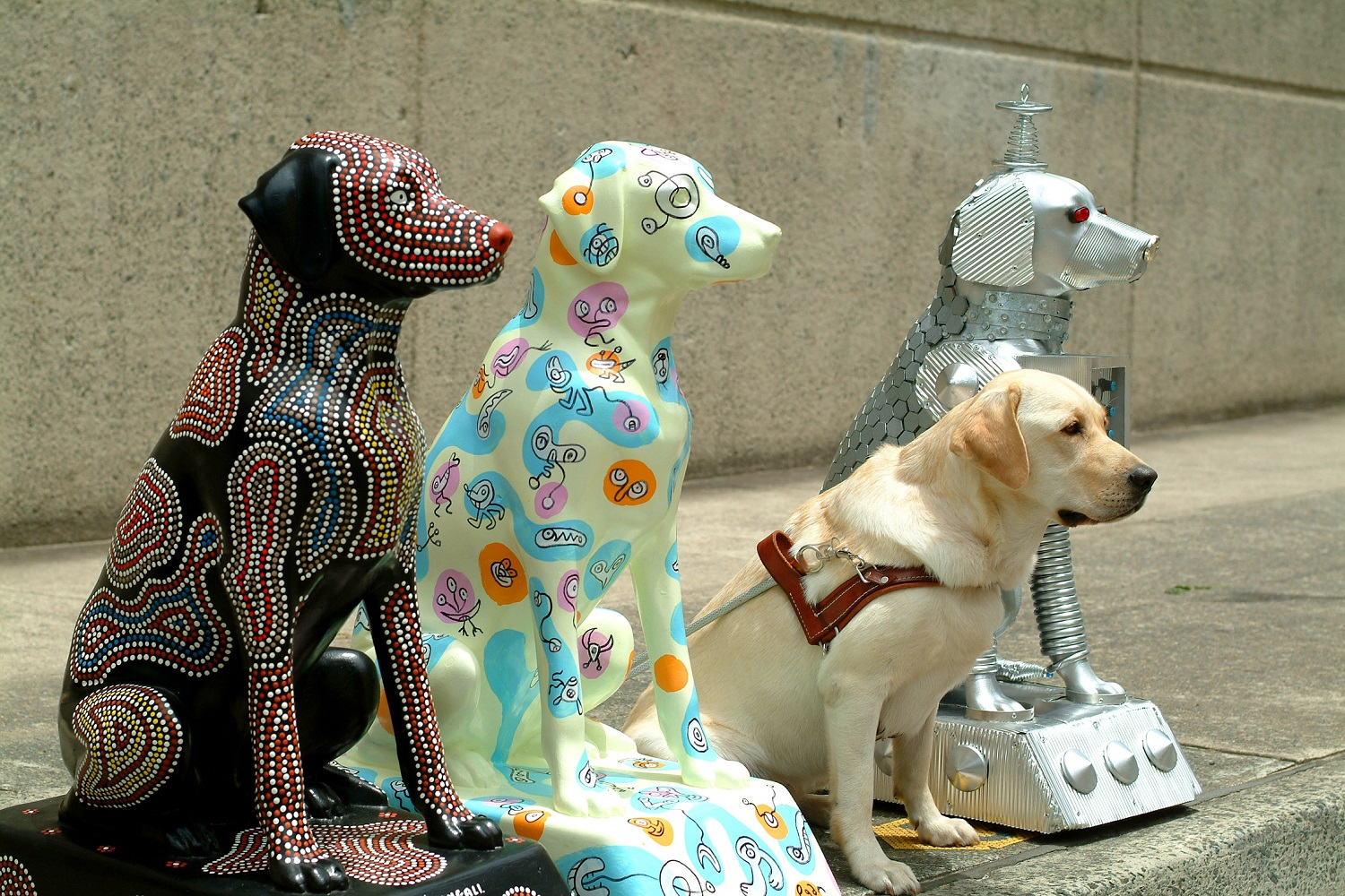 60 Tails – 60 Years of Guide Dogs exhibition