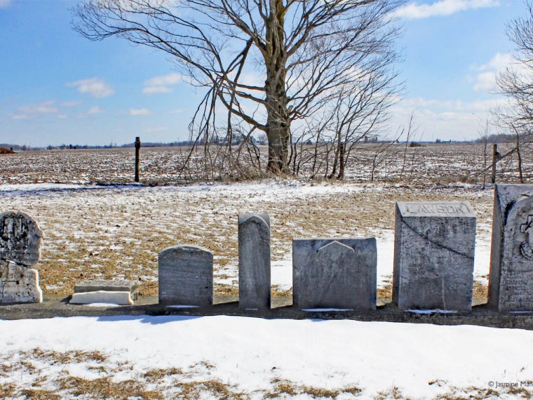Queens Bush Settlement gravestones