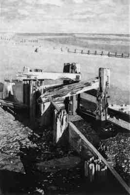 RYE BAY GROYNES 1- Groynes at low tide on Winchelsea beach near Rye with Dungeness in the background. Limited edition etching  Click here to see larger more detailed image and view purchasing options