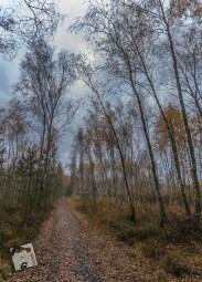 grabicz-jesienia3