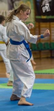 karate-kyokushin-9114