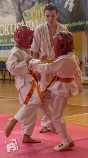karate-kyokushin-9216