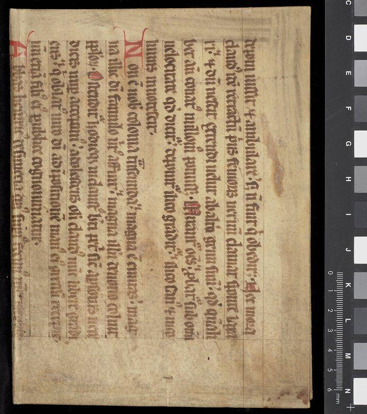 Book bound in a recycled manuscript leaf