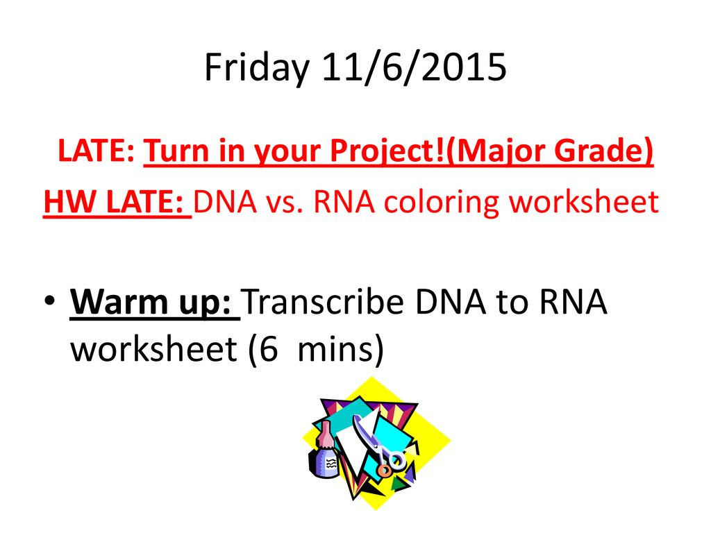 30 Protein Synthesis Coloring Worksheet