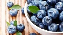 Bowl-of-blueberries-1836