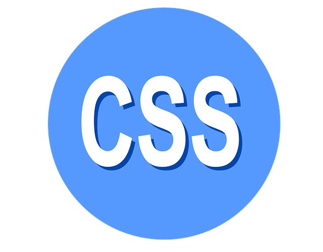 CSS <Cascading Style Sheets >